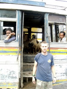 bus with goats