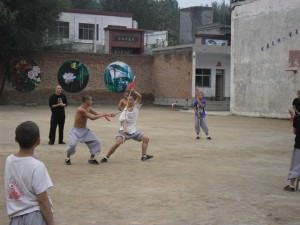 shaolin temple martial arts