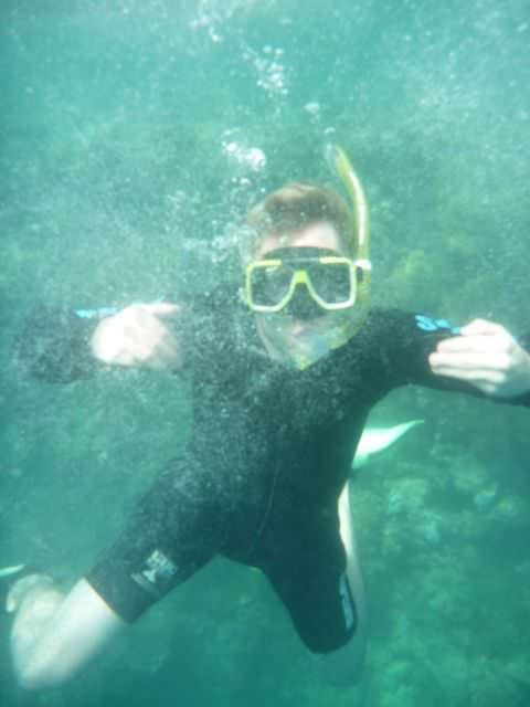 snorkelling at the great barrier reef