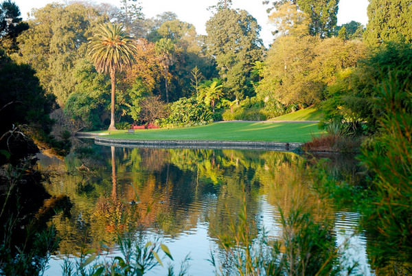 5 things to do around melbourne travel lifestyle of your dreams