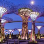 4 Things To Do In Singapore
