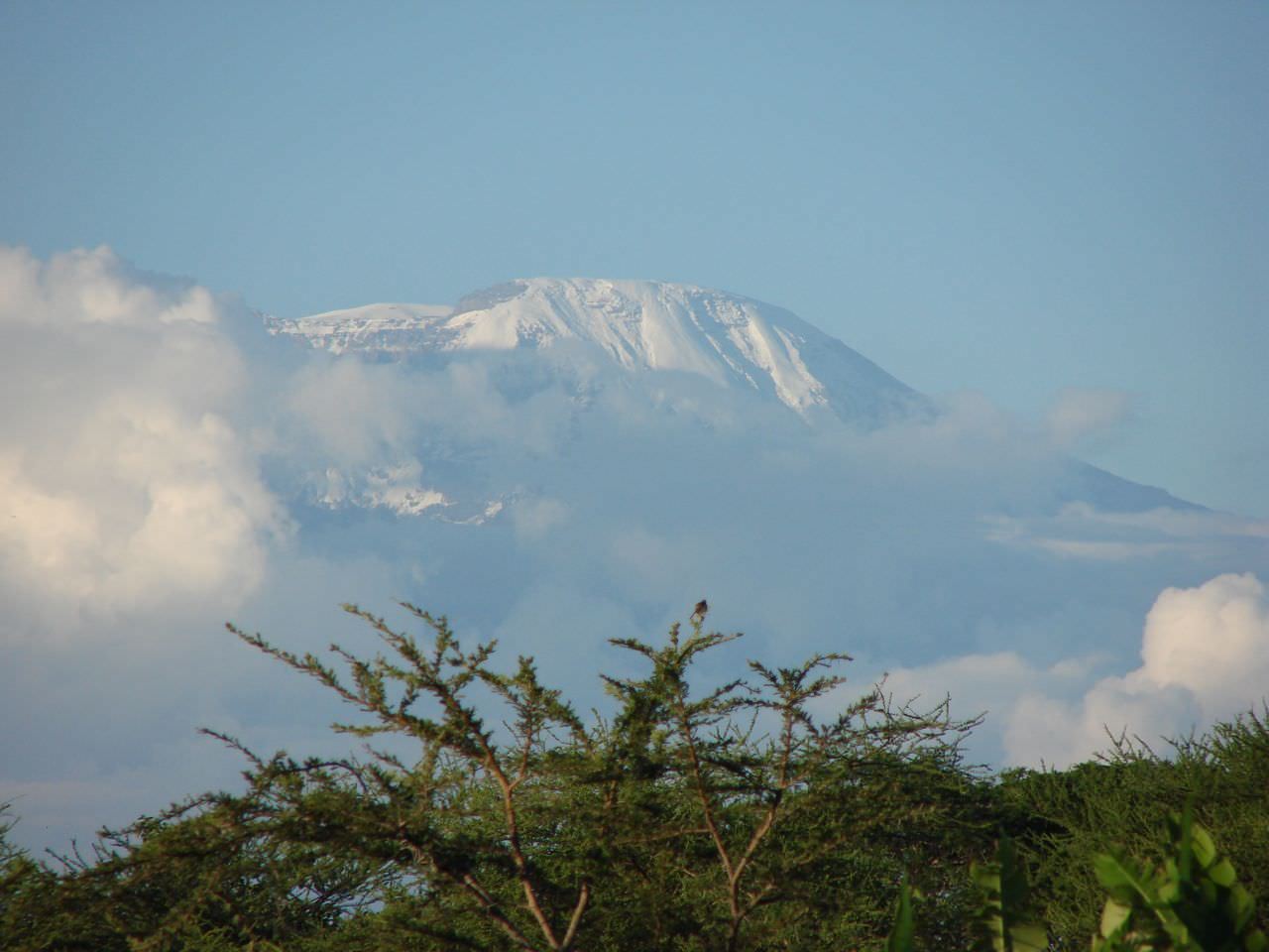 How much Does It Cost To Climb Kilimanjaro | One Step 4Ward