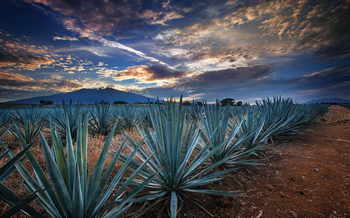 things to see in Mexico