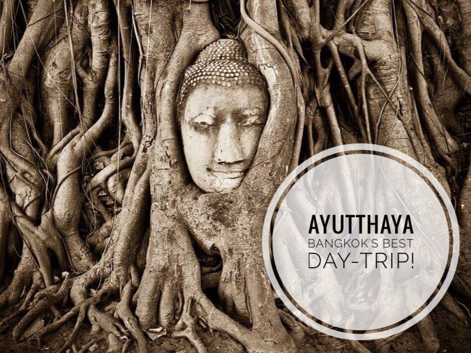 ayutthaya buddha head tree