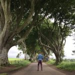 The Dark Hedges (Game of Thrones) in Ireland; Everything You Need to Know!