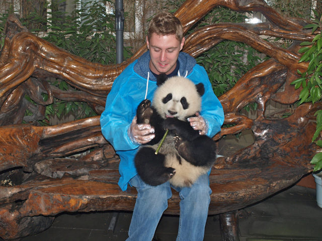 holding-a-panda-in-china