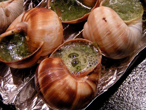 escargo on cruises