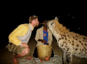 Johnny Ward travels and a hyena
