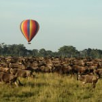 Top 5 Things to Do in Kenya