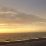 7 Reasons You Must Visit the Isle of Palms
