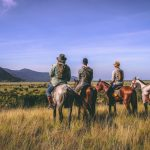 Becoming a Cowboy on a Guyanese Ranch