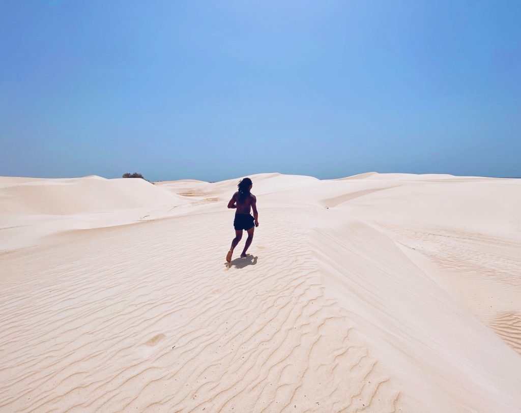 Tours to Socotra