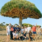 Traveling to Socotra Island, Yemen; My Group Tour Experience in 2020