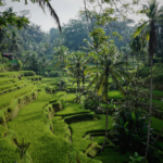 Bali Itinerary – Plan Your PERFECT 10 Days in Bali